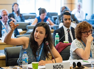 Nena@UN disability committee2016