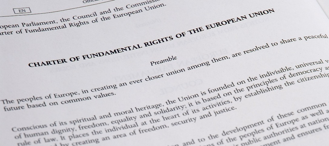fundamental_rights_charter-photo_by_Trounce_Own_work-cropped