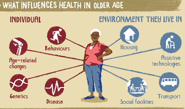 healthy-ageing-630-WHO_infographic